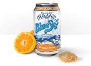 Blue Sky Orange Divine
