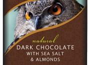 Endangered Choco Owl