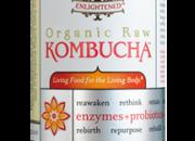 Synergy Kombucha Gingerade